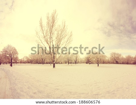 a scenic cold winter landscape with snow and trees done with a retro vintage instagram filter  - stock photo