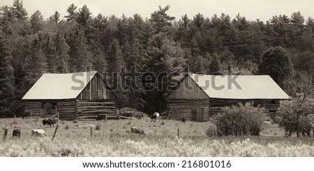"""A Working Pioneer Farm"" Traveling the historic Opeongo Pioneer Road in Renfrew County in Eastern Ontario, an area first settled by Irish immigrants starting in the 1840's. - stock photo"