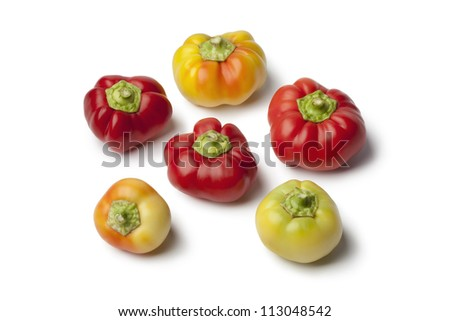 Alma paprika peppers on white background