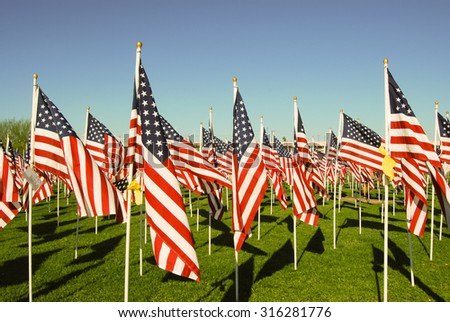 2977 American flags, one for each victim of the 911 tragedy, flys on the anniversary day. - stock photo