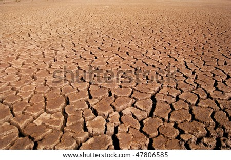 arid background - stock photo