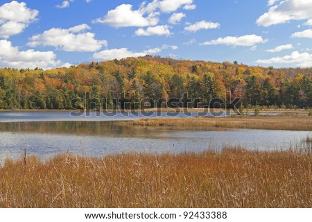 """Autumn Strikes"" -- Sleeping Bear Dunes National Lake Shore, Empire, Michigan, USA. - stock photo"