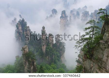 """Avatar mountains"" in Zhangjiajie National Park, Hunan, China - stock photo"