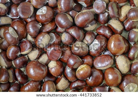background texture created with chestnuts, autumn background. - stock photo