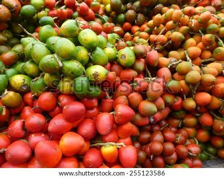 Bactris gasipaes, palm fruits, Amazonia, Brazil  - stock photo
