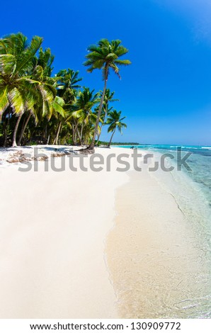 Beach and Palm tree  .Paradise. Vacation and Tourism concept