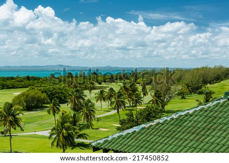 Beautiful amazing view of natural tropical garden against tranquil ocean and blue sky with fluffy bluish clouds on sunny gorgeous warm day - stock photo