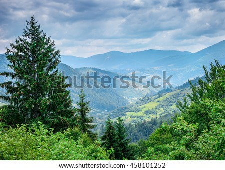 Beautiful mountains covered trees. Carpathian, Ukraine, Europe. - stock photo