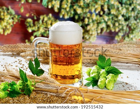 beer glass hops and barley - stock photo
