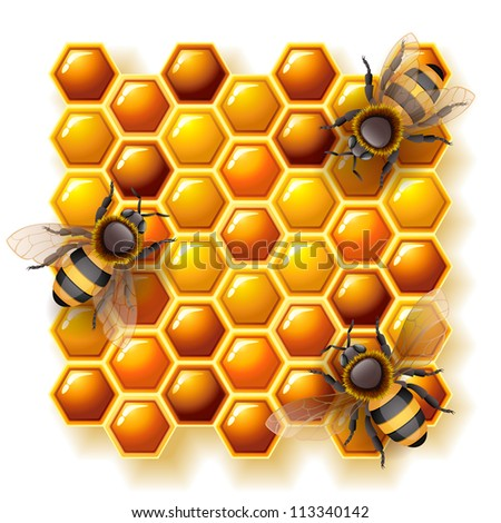 bees and honey - raster version - stock photo