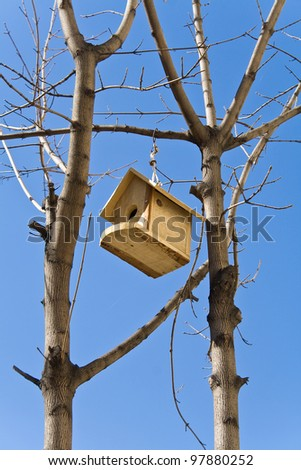 Birdhouse on a tree over blue sky - stock photo