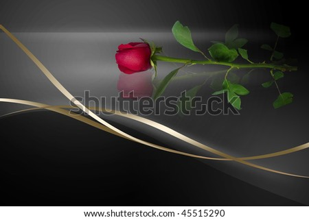 black background with Rose - stock photo