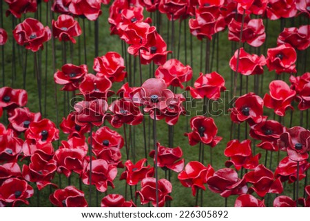 'Blood Swept Lands and Seas of Red'. Close up of the  888,246 ceramic poppies marking the centenary of the outbreak of the First World War in the moat of the Tower of London, London, England.  - stock photo