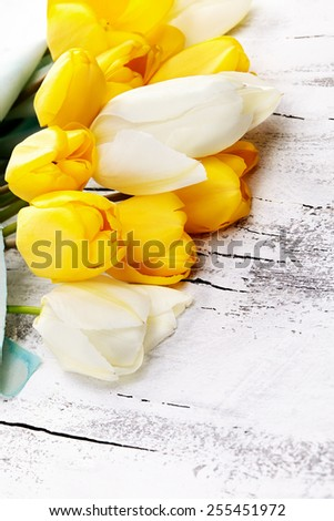 bouquet of fresh spring tulip flowers on white wooden background - stock photo