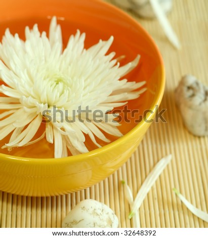 bowl of water with flower and stones - stock photo