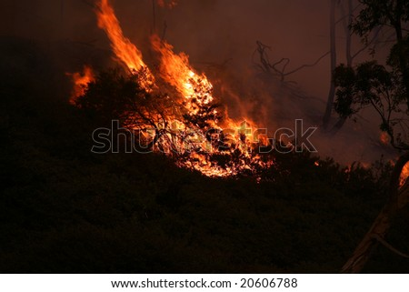 11-15-2008 Brea California Wild Fire Series. Various images from Southern California Wild Fires - stock photo
