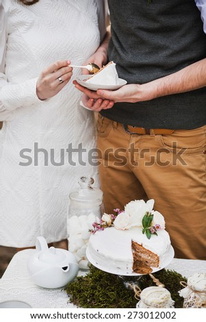 bride and groom cutting their wedding cake. beautiful wedding cake. wedding couple eating. wedding reception - stock photo