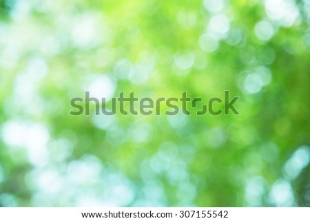 bright spring and nature green blurred background - stock photo