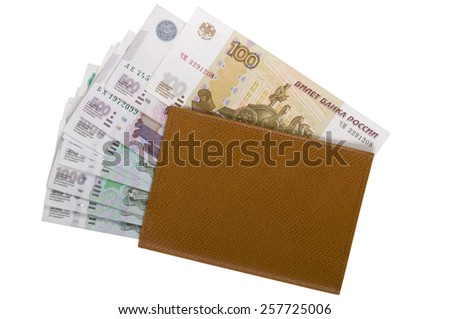 Brown leather wallet with money - stock photo