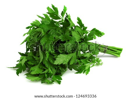 Bunch of fresh parsley isoleted on a white background - stock photo