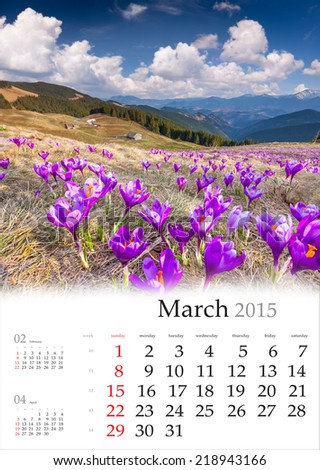 2015 Calendar. March. Blossom of crocuses in spring in the mountains - stock photo