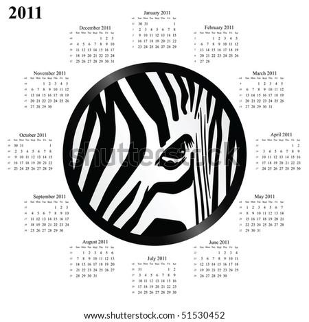 2011 calendar with a circular abstract zebra design - stock photo