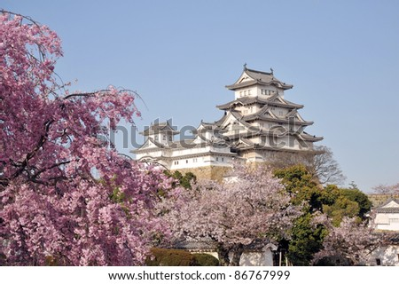 Castle of Himeji with spring cherry blossoms .Japan-1-3