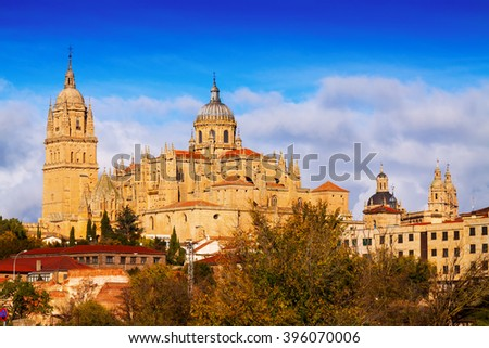Cathedral of Salamanca in sunny autumn day. Spain