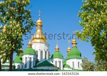Cathedral Saint Sophia in Kiev in framing the flowering chestnut - stock photo