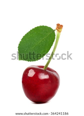 cherries with leaf isolated - stock photo
