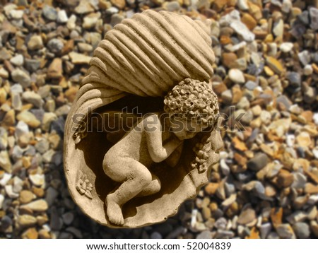 Child asleep on a nautilus shell on beach - stock photo