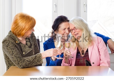 Close up Happy Adult Women Best Friends Enjoying Glasses of Wine at the Wooden Table While Celebrating Something. - stock photo