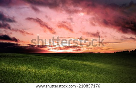 clouds over field with grass - stock photo