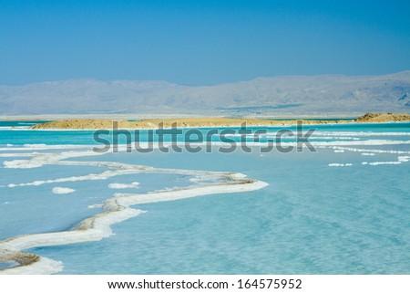 coast of the Dead Sea , Israel - stock photo