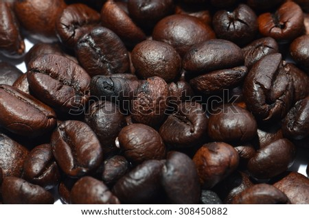 coffee beans   with white background