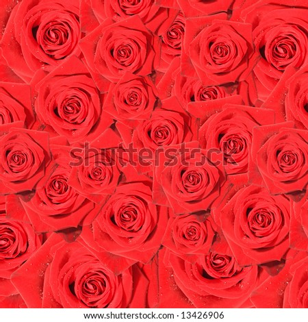 collection of romantic red roses - stock photo
