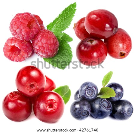 collection set of forest  berries  closeup macro  isolated on white background - stock photo