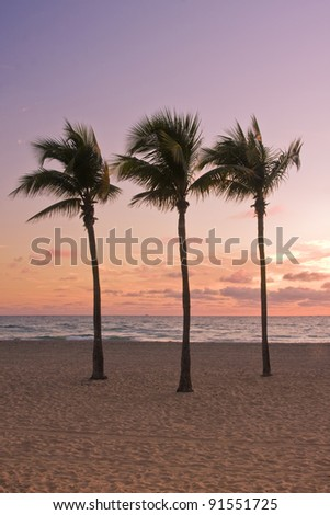 Colorful Tropical summer paradise in Miami Beach Florida with silhouettes of palm trees and ocean in the background at sunrise, with pristine sands and cloudy sky - stock photo