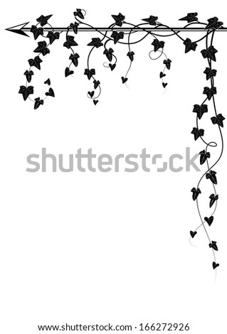 corner design with branch of ivy - stock photo