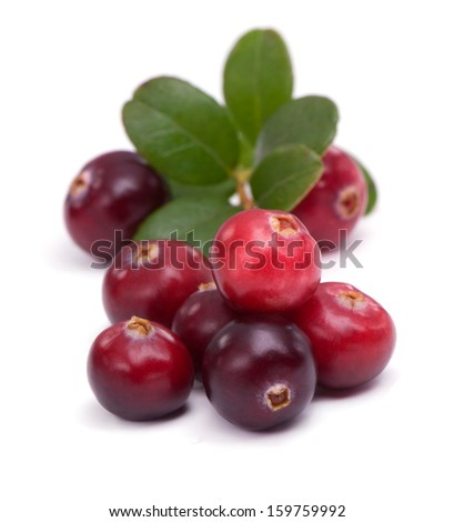 Cowberry with green leaflets on white background - stock photo