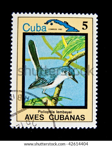"CUBA - CIRCA 1983: A stamp printed by Cuba shows tropical Bird , stamp is from the series, circa 1983. ""Tropical birds"", series, 15 stamps"