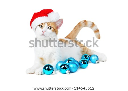 cute red and white cat in santa's hat with new year balls isolated