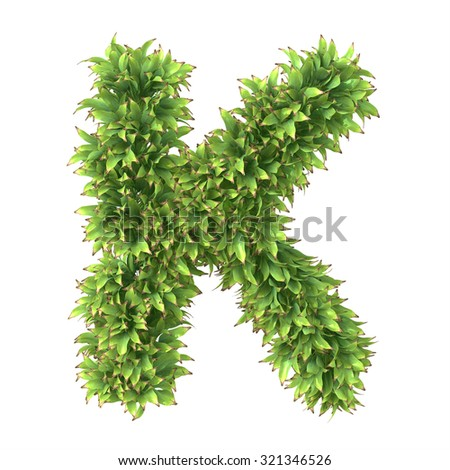 "3d ""Ananas"" decorative nature letter K"