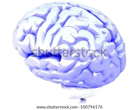 3D blue human brain - stock photo