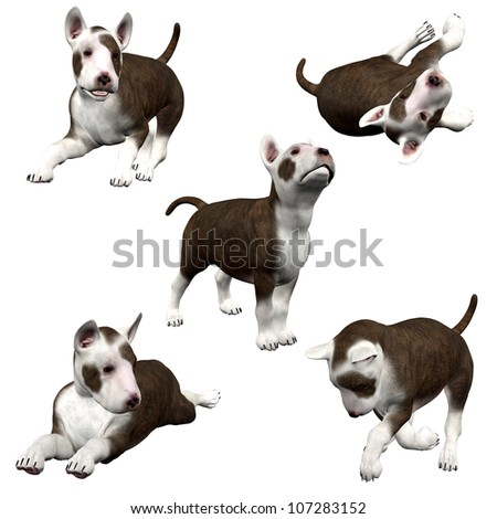 3D Bull Terrier Puppies - Isolated