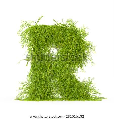 3d decorative nature letter R - stock photo