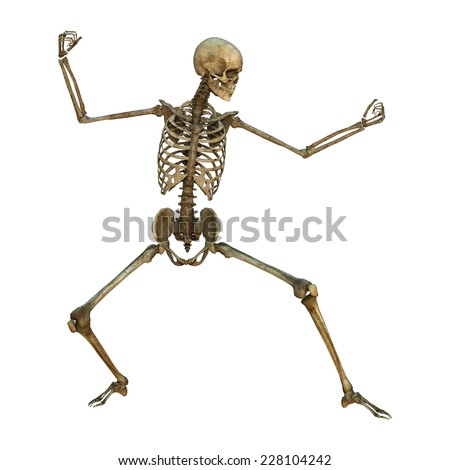 3D digital render of a human skeleton in a blocking martial arts position isolated on white background