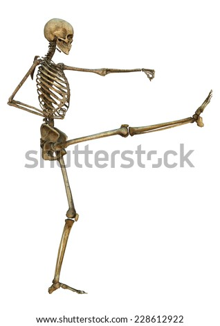 3D digital render of a human skeleton in a mawashi-geri gari martial arts position isolated on white background