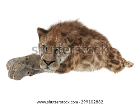3D digital render of a smilodon or a saber toothed cat isolated on white background
