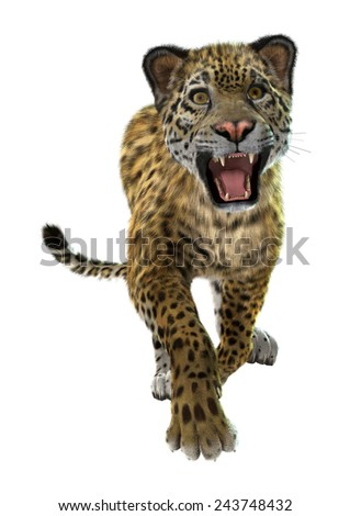3D digital render of a wild jaguar isolated on white background